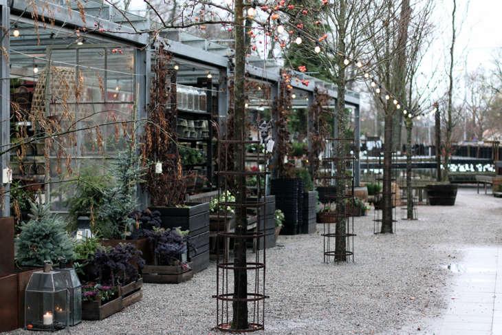 zetas-tradgard-garden-sho–stockholm-gardenista