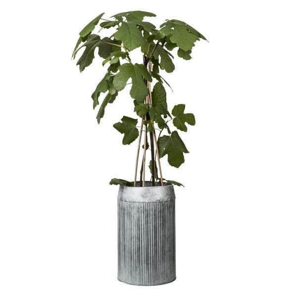 zinc-planter-barrel-gardenista