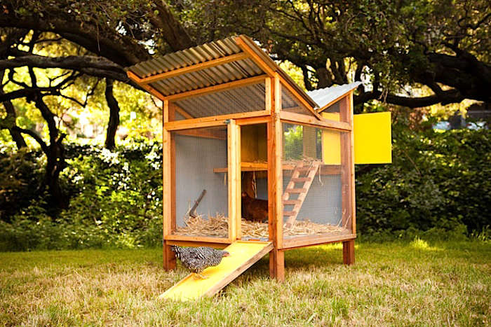Backyard Chicken Coop Designs coloradomikes colorado chicken coop Chick In A Box Coop