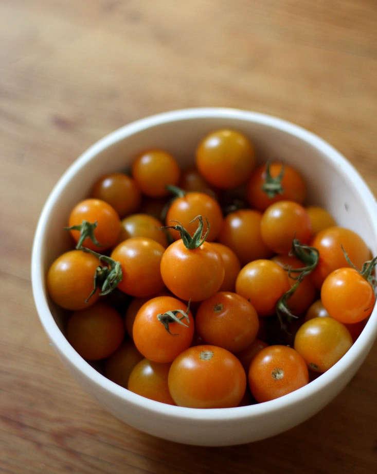sungold-cherry-tomatoes-orange-gardenista