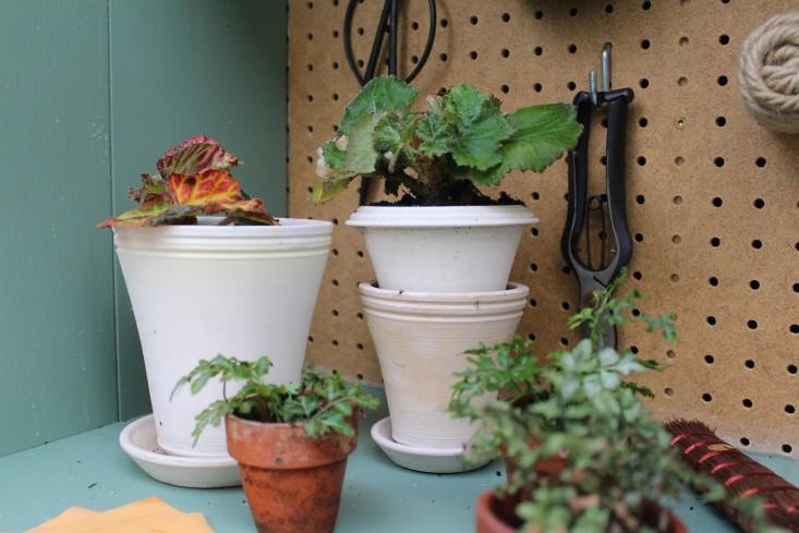 tiny-potting-shed-ben-wolff-pots-gardenista