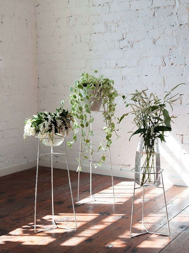 A bewitching trio of wire plant stands gardenista - Steel pot plant stands ...