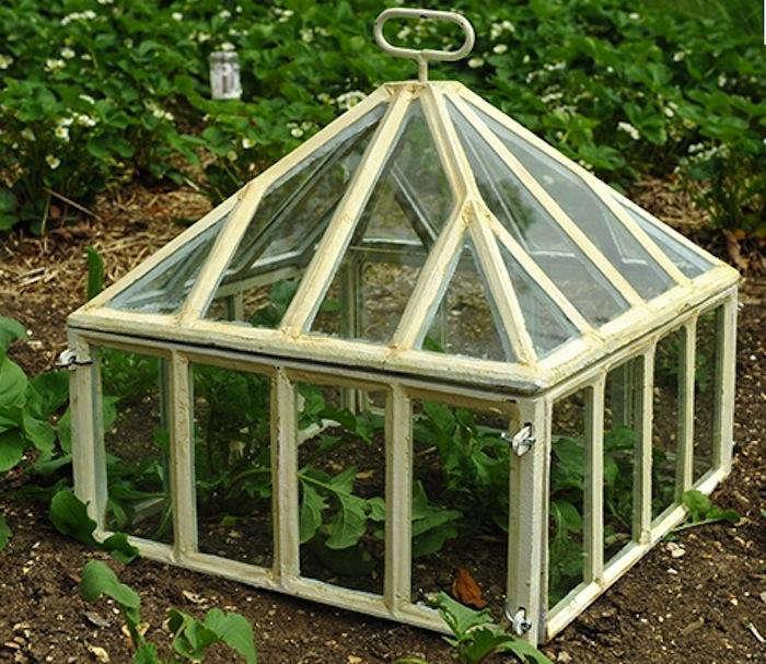 Victorian Style Cloche Gardenista