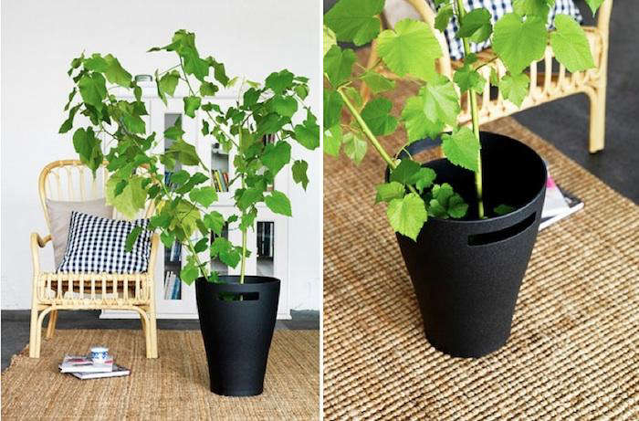 Dadel black planter pot gardenista for Black planters ikea