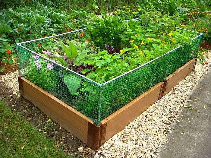 Raised Garden Bed Rabbit Fence Gardenista