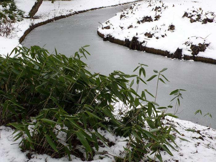 700_2-cottesbrooke-lake-in-winter