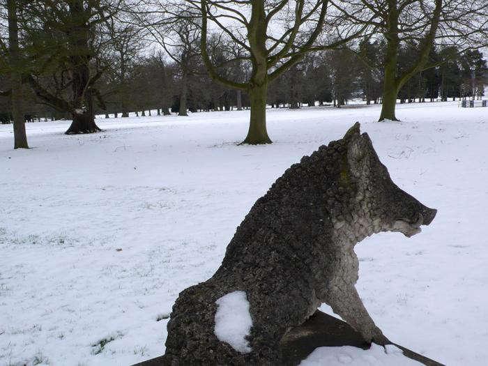 700_3-boar-in-winter