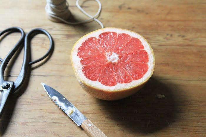 700_700-diy-grapefruit-birdfeeder-3-jpeg-jpeg