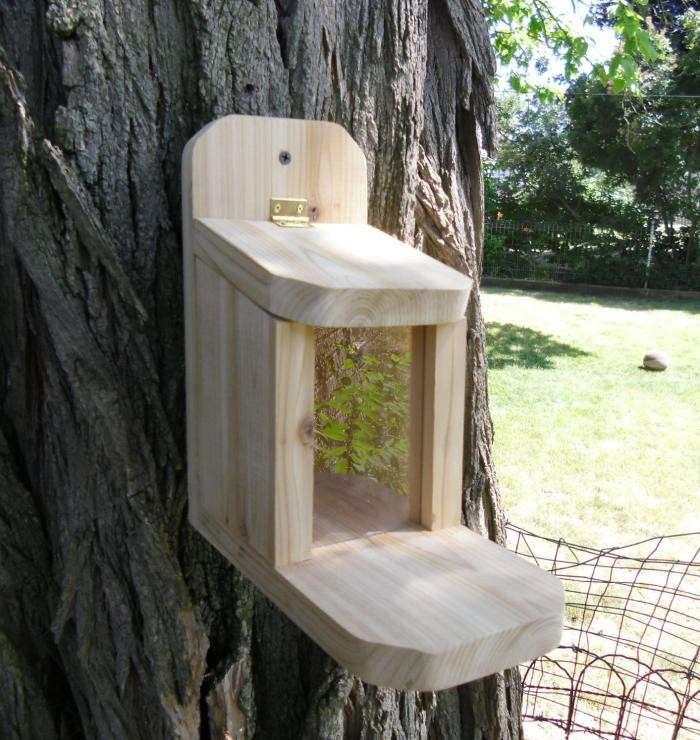 700_etsy-squirrel-feeder-jpeg