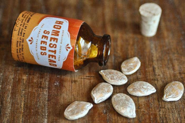 700_homestead-casper-pumpkin-seeds