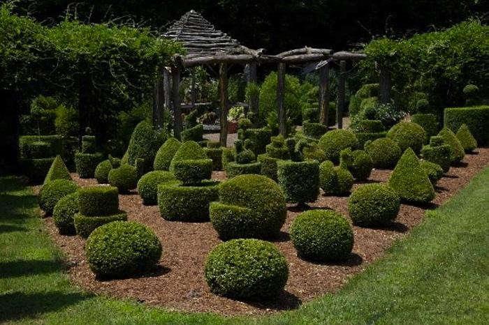 700_matthew-larkin-garden-090