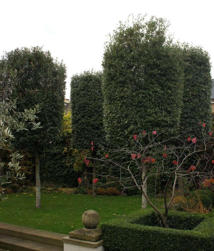 700_neisha-crosland-garden-02