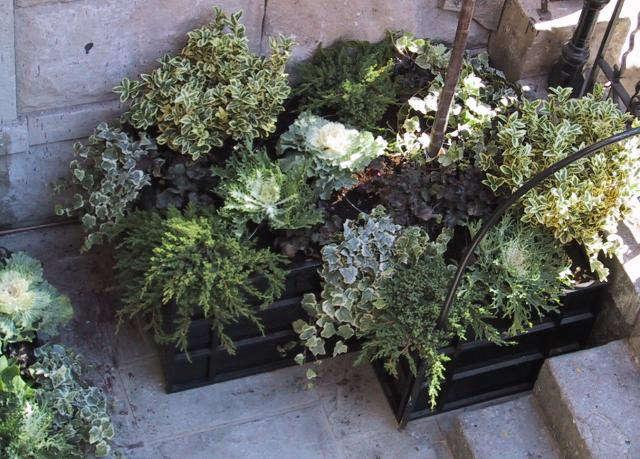 640_front-garden