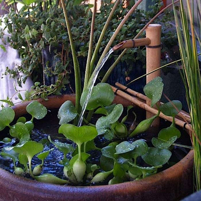 Instant Bamboo Fountain Just Add Water Gardenista