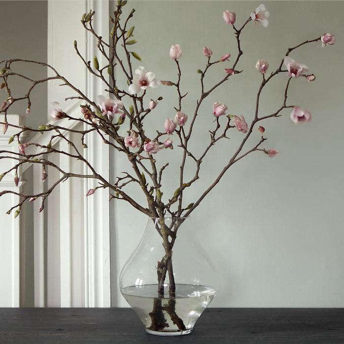 700_tulip-magnolia-2