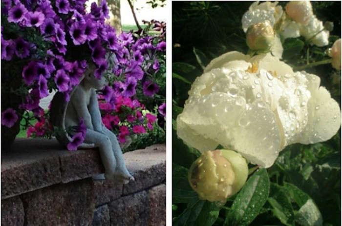 gardenista-contest-think-spring-copy