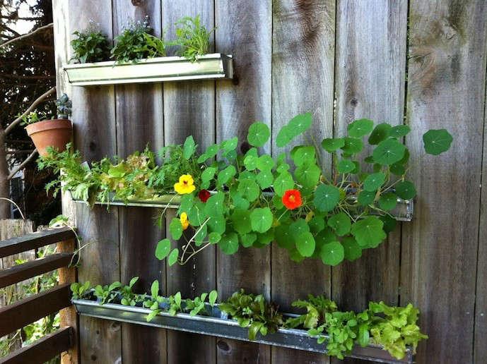gutter-garden-updated