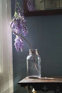 Wisteria in jar by Amy Merrick ; Gardenista