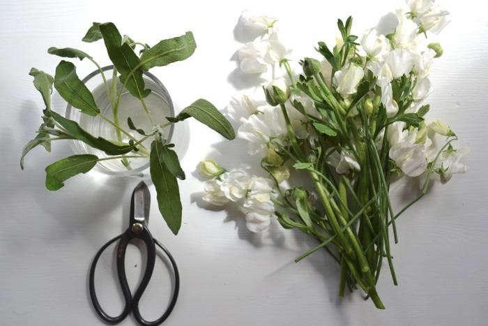 700_scissors-flowers-sage-leaves