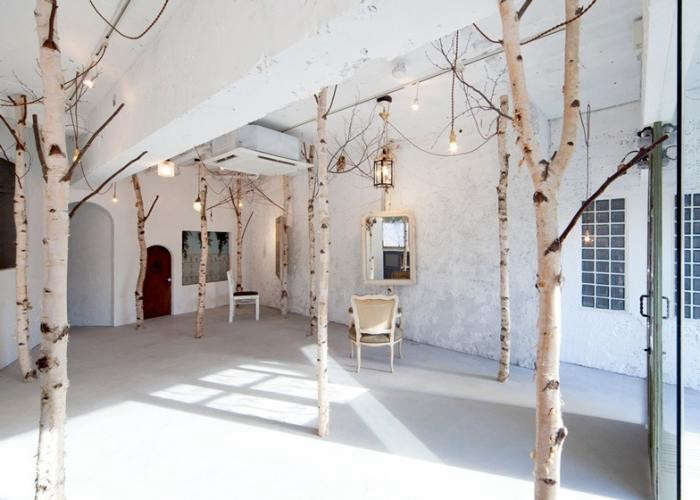 700_indoor-birch-tree-forest-in-osaka