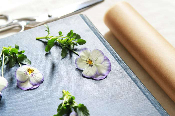 Diy Pressed Flower Bookmarks Gardenista