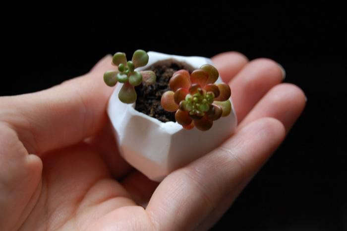 700_tiny-clay-pot-transient-expression-4