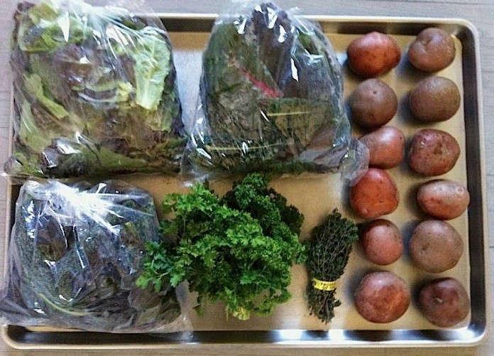 csa-veggie-box