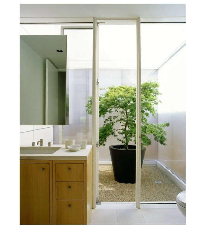 garden-like-bathroom-in-marin-county