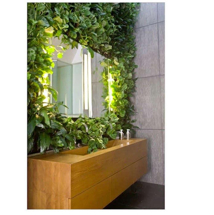 tropical-vine-bathroom-framed-mirror