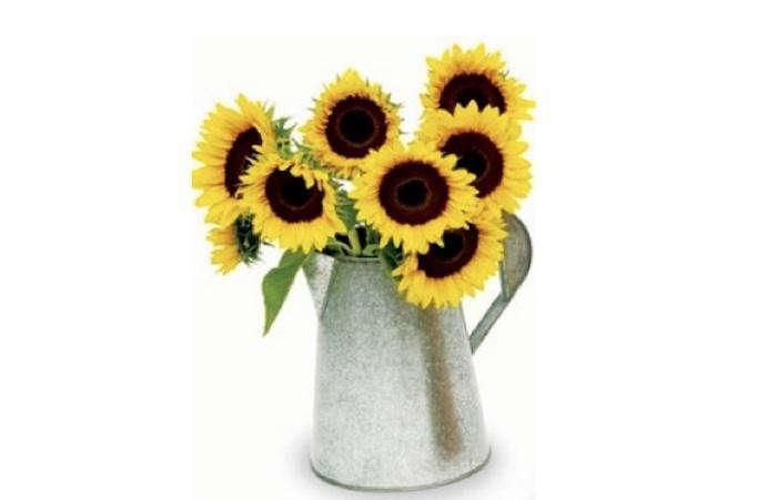 700_sunflowers-in-tin-vase