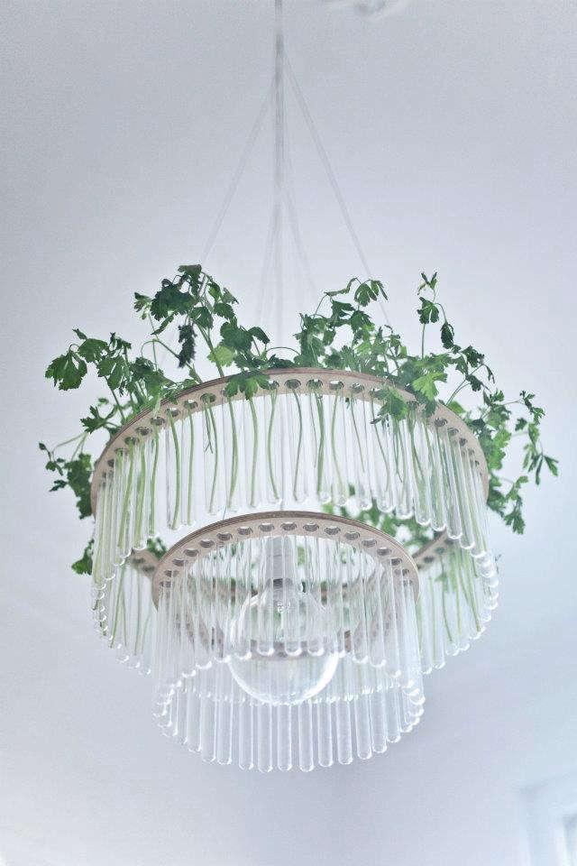 pani-test-tube-chandelier-parsley