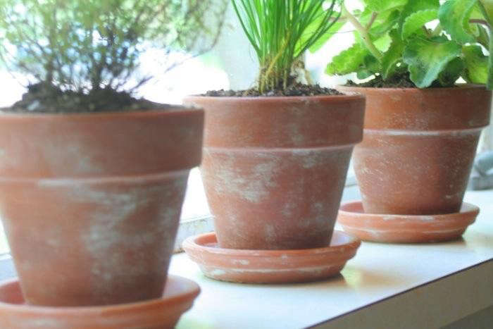700_diy-age-terra-cotta-pot-1
