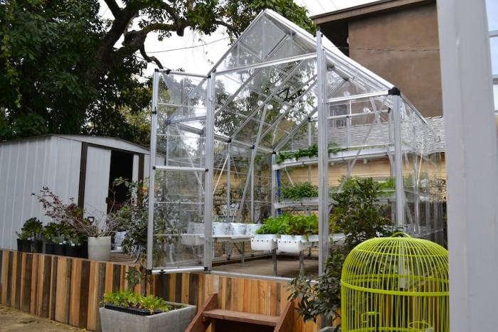 700_ilan-dei-side-greenhouse2