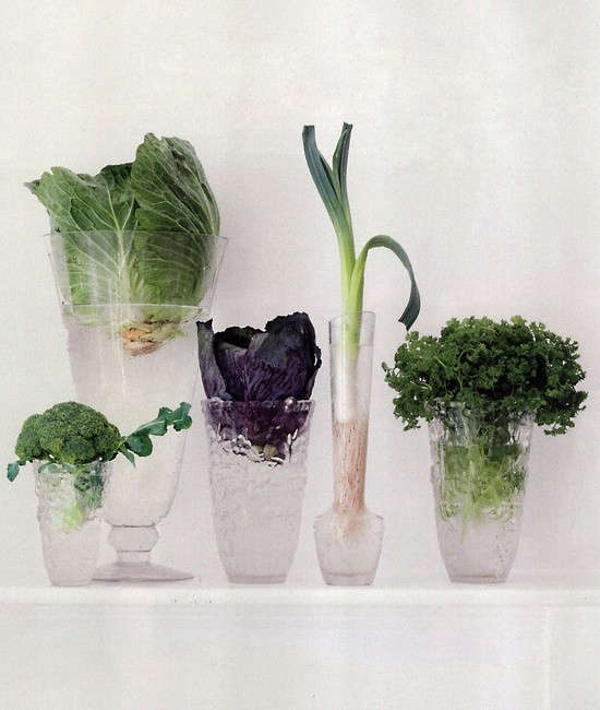 vegetables-as-decor-babylonstoren-10