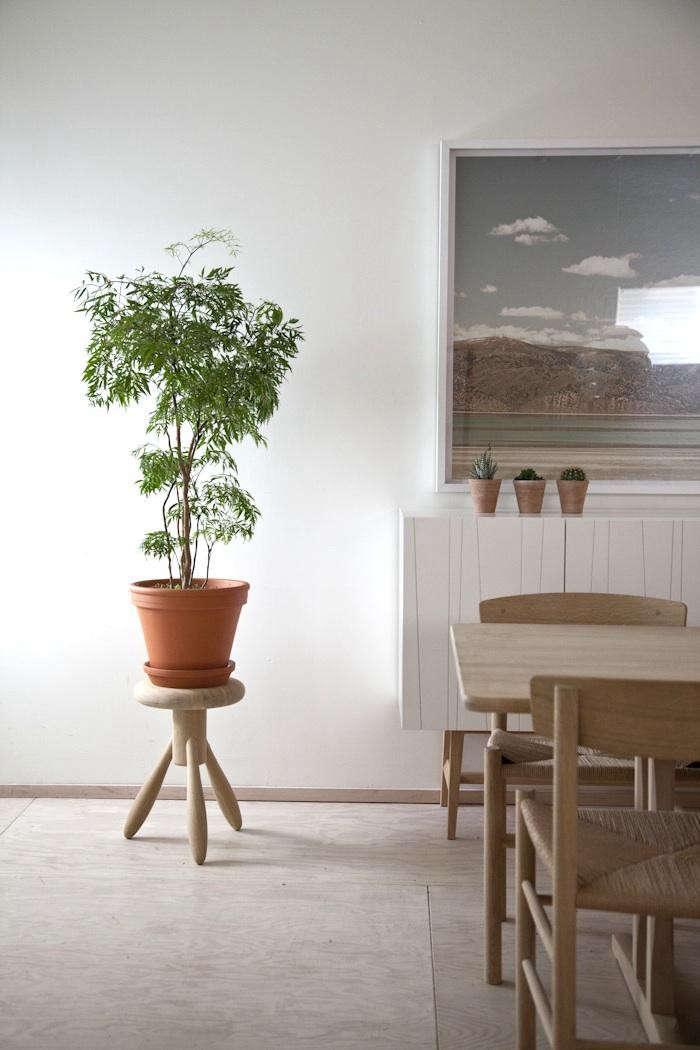 700_kitka-houseplant-10