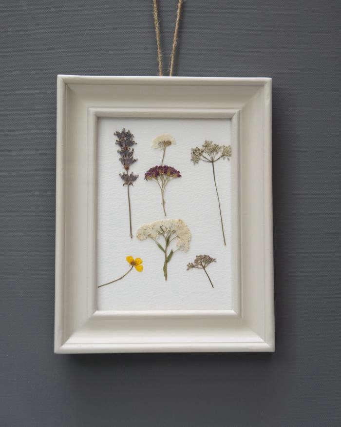 700_pressed-flowers-08