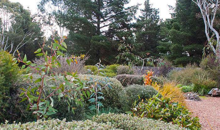 700_reid-and-friends-wild-garden