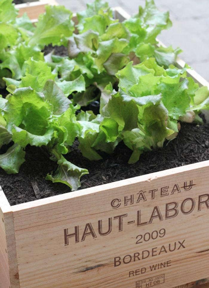 700_urban-gardening-raised-beds-6