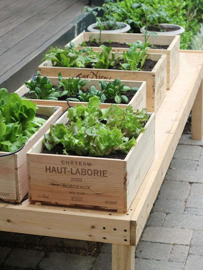 700_urban-gardening-raised-beds