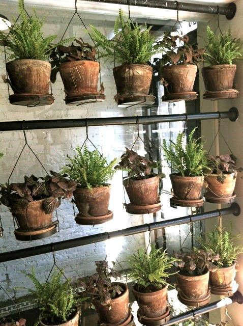 hanging-terracotta-plants-nyc