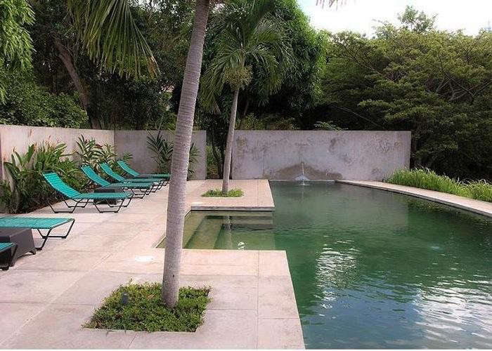 700_640-hix-house-pool-10-jpeg
