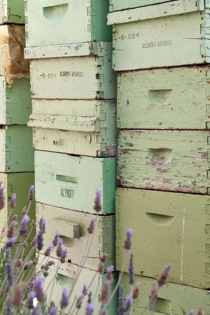 700_fairmont-beehive-closeup