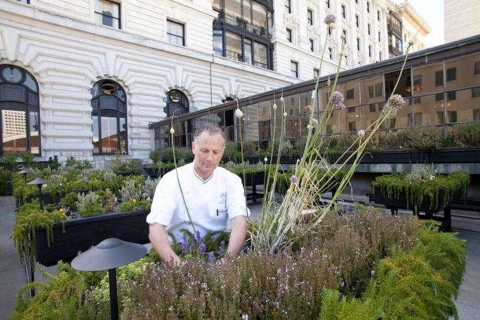 700_fairmont-chef-in-garden