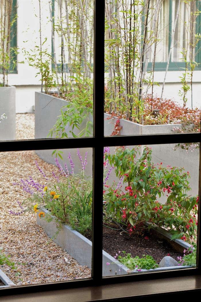 Chef Garden: A Chef's Secret Fifth Floor Garden: Gardenista