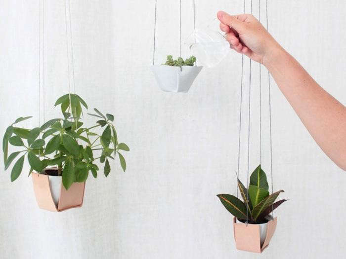 700_suspension-hanging-plants-caroline-plant-holders