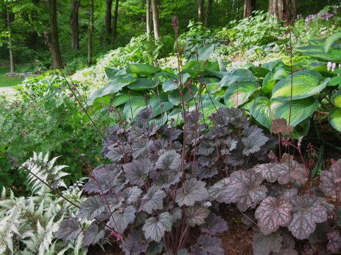 Ten Top Tips For Small Shady Urban Gardens: Design Sleuth: The Ultimate Shade Garden: Gardenista