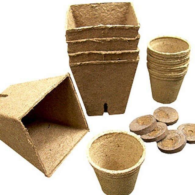 biodegradable-jpeg