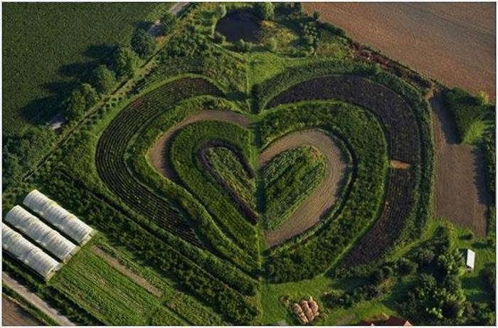 700_heart-garden