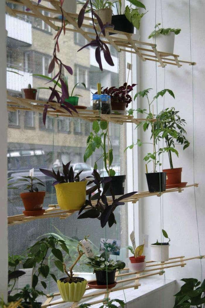 DIY: Instant Hanging Shelves For Houseplants: Gardenista