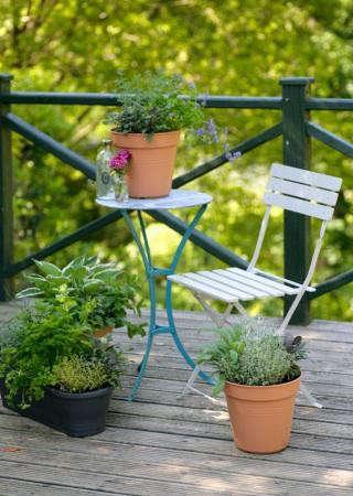 small-edible-garden-balcony-gardener